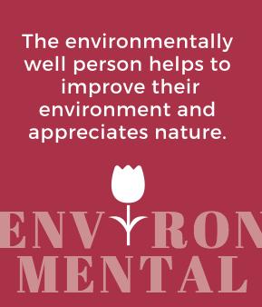 Final_environmental