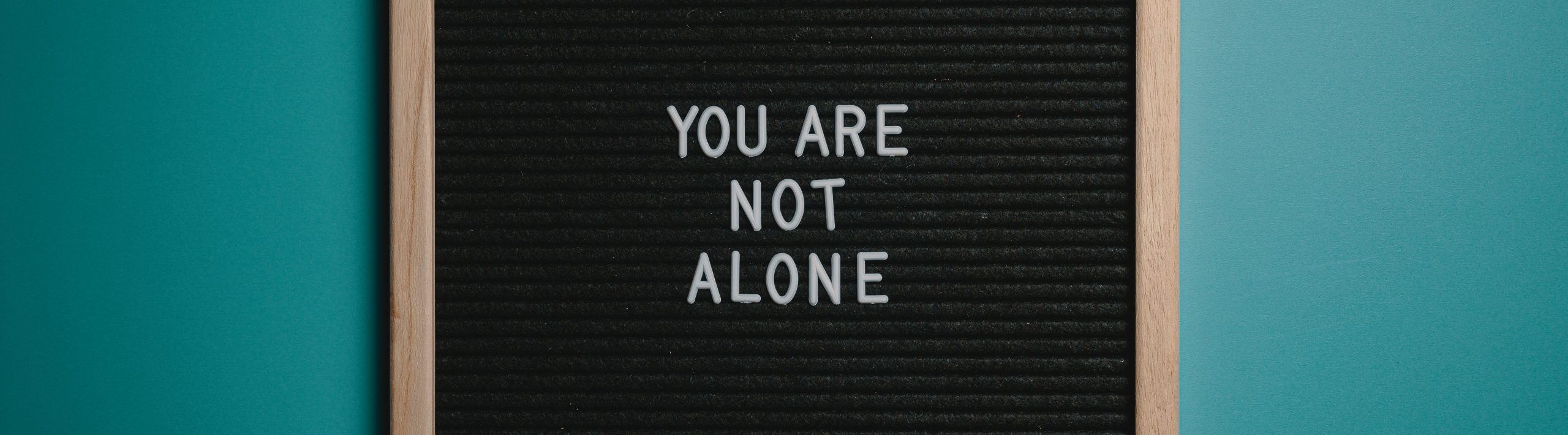 you-are-not-alone-quote-board-on-brown-wooden-frame-2821220_banner
